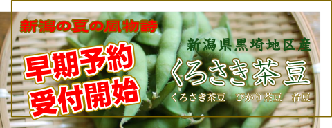 2017年度早割!くろさき茶豆