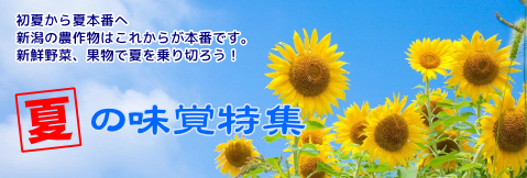 夏の味覚特集