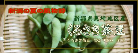 黒埼地区産くろさき茶豆